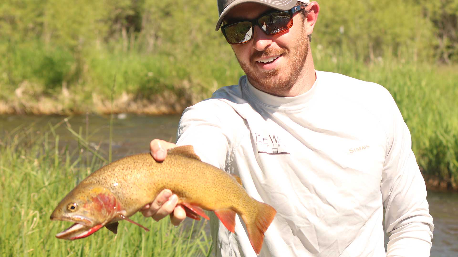Flat Creek Fishing Estate - Jackson Hole