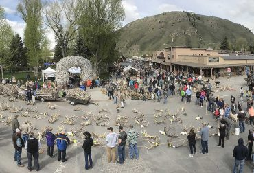 Elkfest in Jackson Hole - Jackson Hole Real Estate