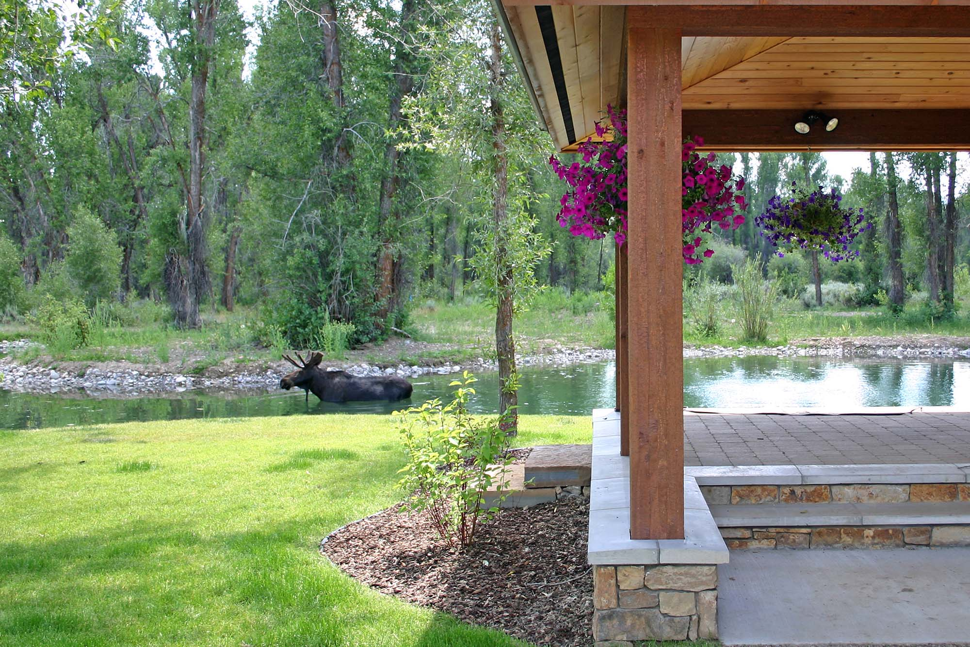 Indian Springs Ranch - Jackson Hole Real Estate