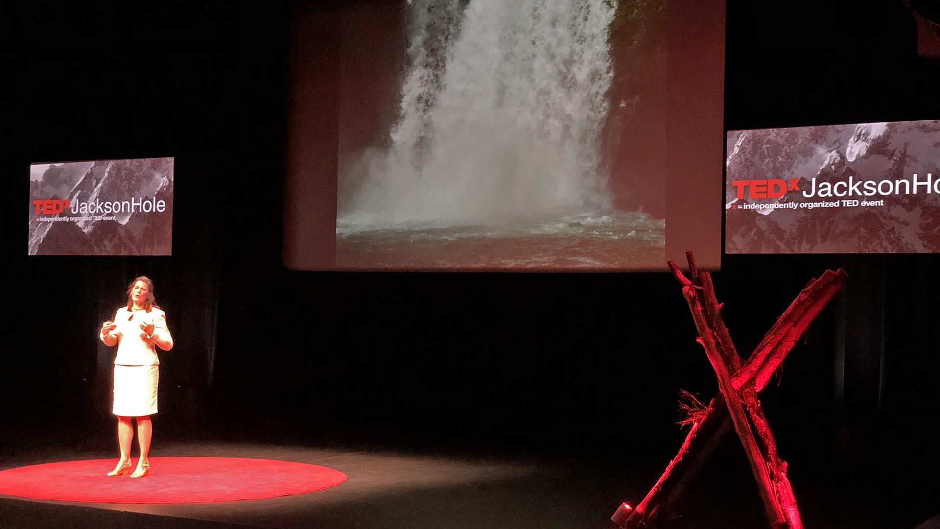 TEDxJacksonHole-2018 New York Times bestselling Author Mary Neal, Jackson Hole, Wyoming