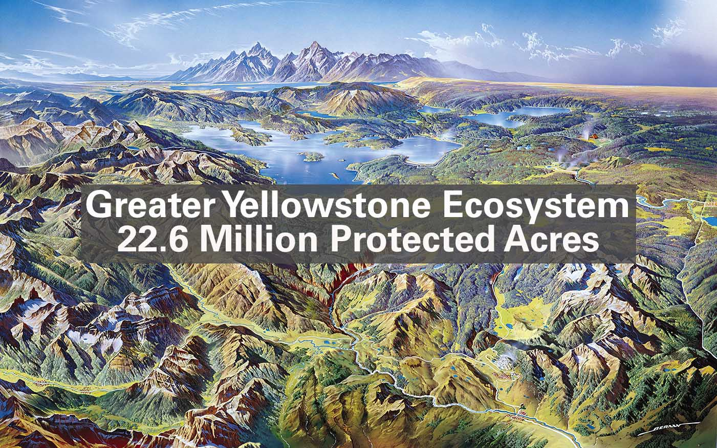 Greater-Yellowstone-Ecosystem
