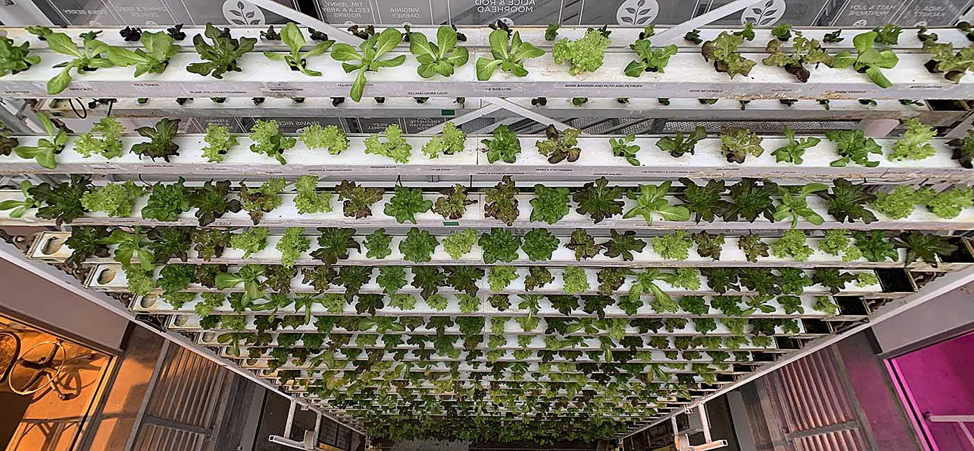 Three-story hydroponic farm, Vertical Harvest in downtown Jackson, Wyoming.