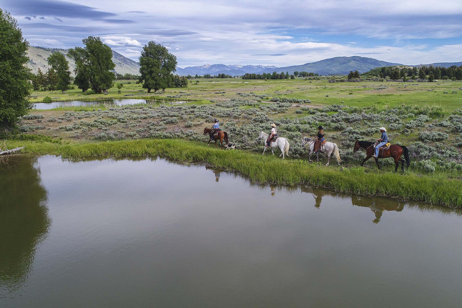 Cody Creek Ranch, Jackson Hole Wyoming Real Estate