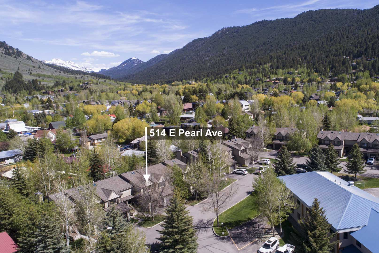514 E Pearl Ave, Jackson WY Real Estate