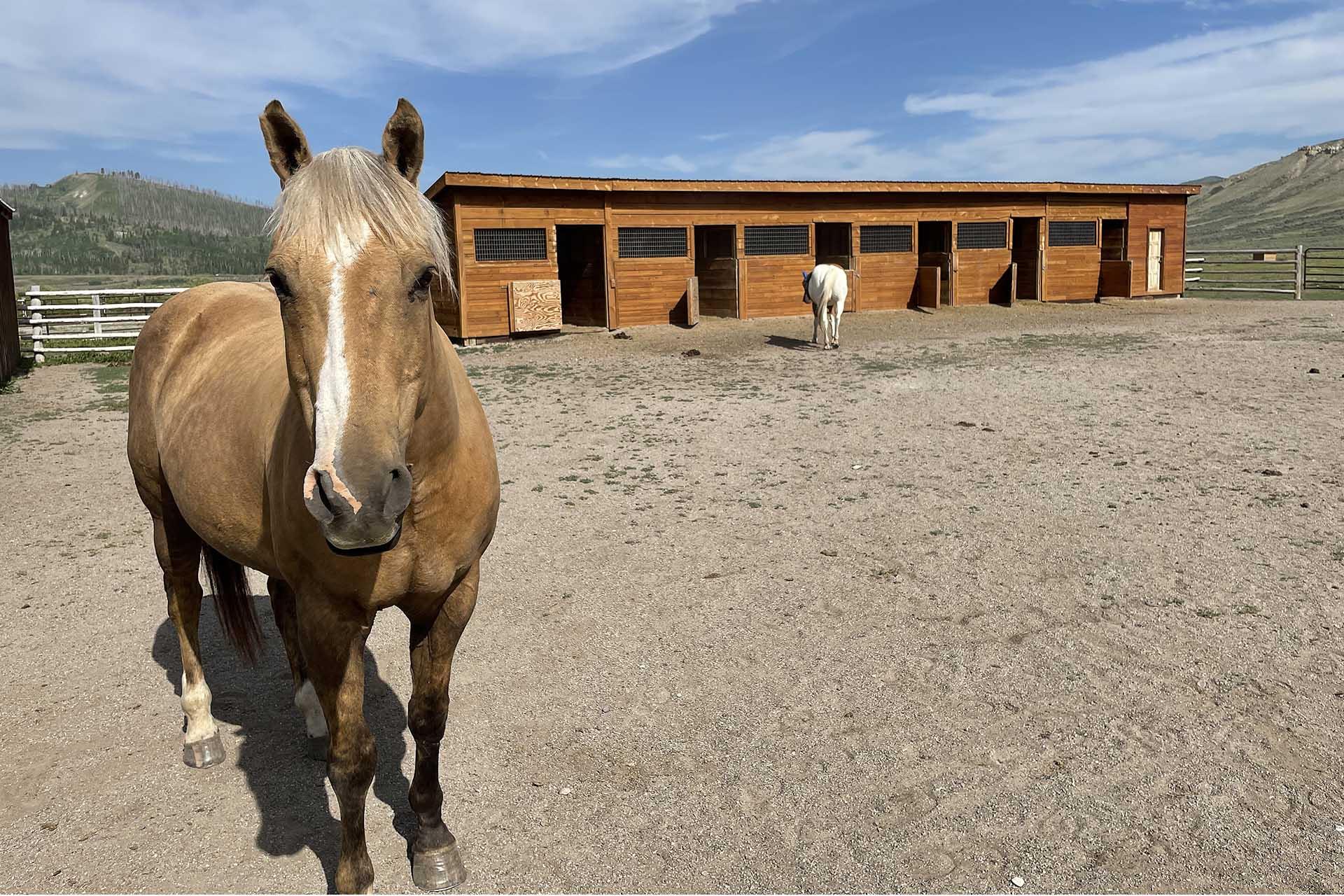 Gunsight Ranch, Jackson Hole, WY